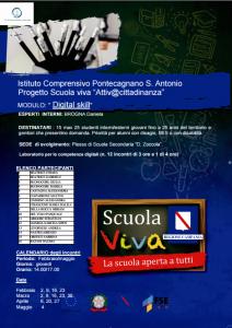 Modulo Digital Skill